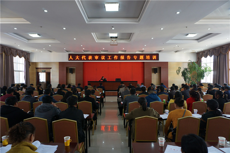 县人大常委会开展县人大代表审议工作报告专题培训